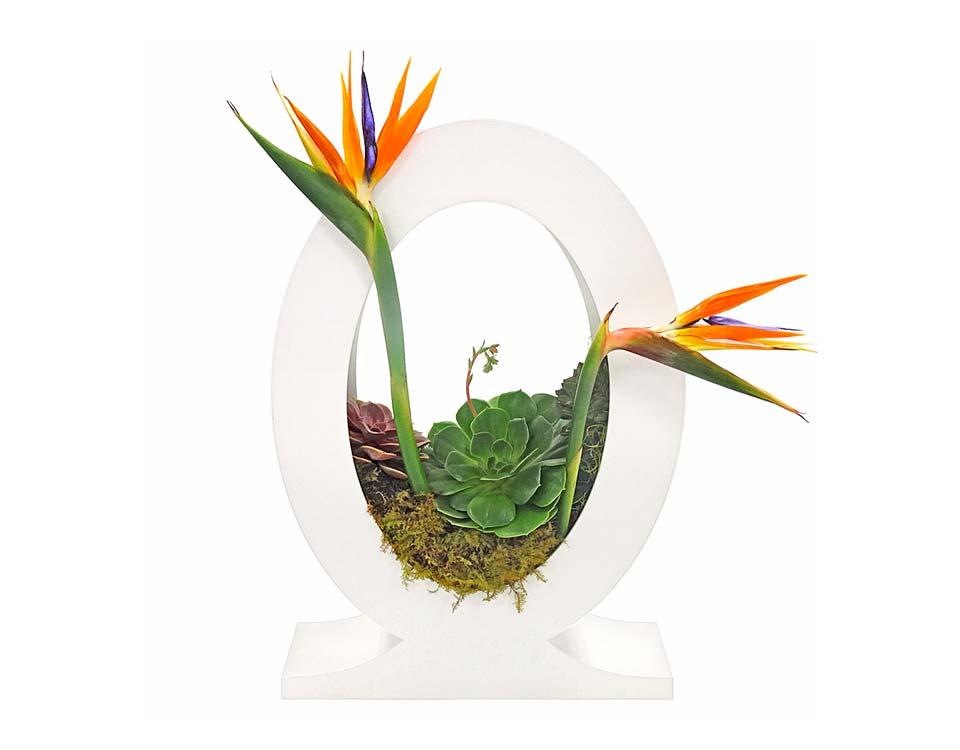 Marguerite Succulent Centerpiece