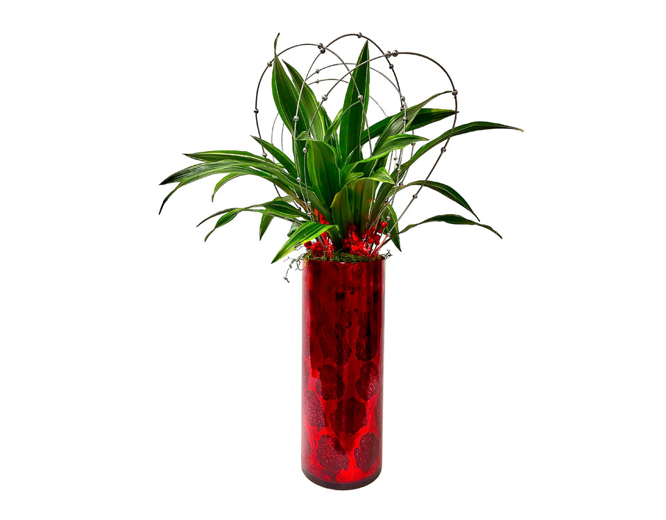Luludi Living Art Lobby Red Planter