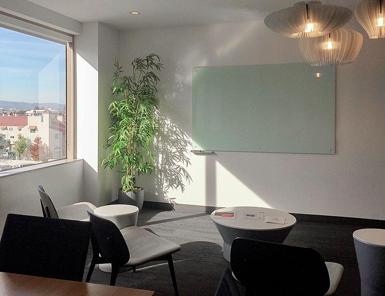 Office Meeting Room Planter