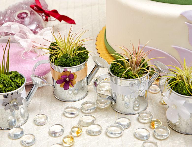 Luludi Living Art Wedding Party Favors