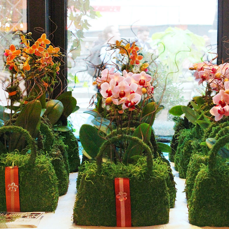 Corporate Gift Moss Purses