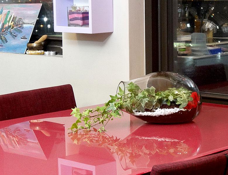 Luludi Living Art Ivy Carafe Terrarium