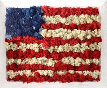 Luludi Living Art Moss American Flag