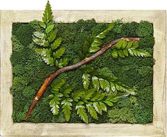 Luludi Living Art Moss Wall Art Garden