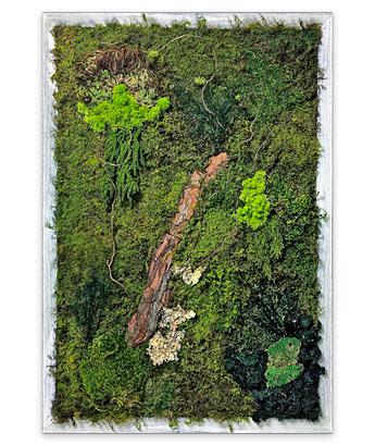 Luludi Living Art Moss Wall Art Garden Bark