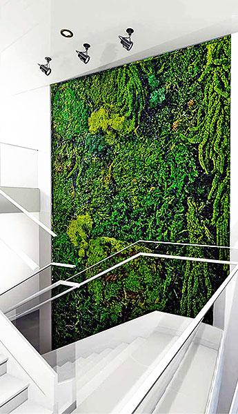 Luludi Living Art Moss Wall Art Stairwell
