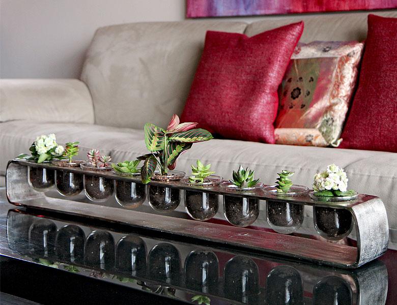 Luludi Living Art Succulent Silver Terrarium
