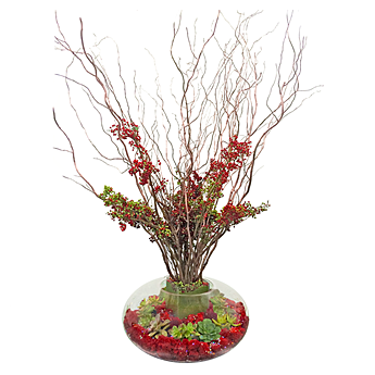 Luludi Living Art Lobby Holiday Berries Terrarium
