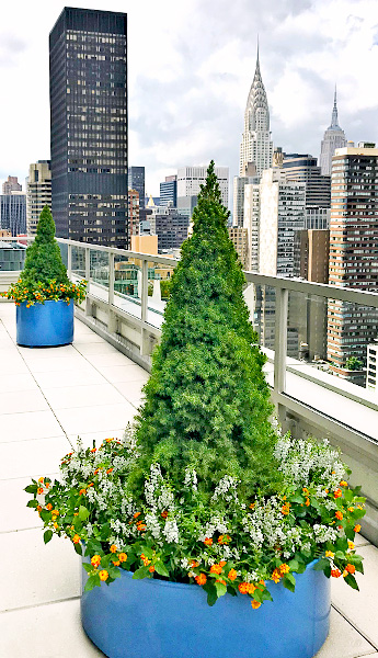 Luludi Living Art 305 East 51 St Rooftop Exterior Landscape