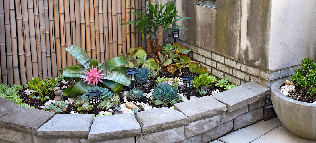 Luludi Living Art 923 Park Avenue Cactus Rooftop Garden