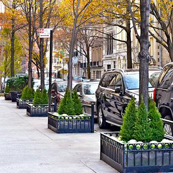 Luludi Living Art 923 Park Ave Tree Fall Landscape Design