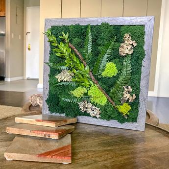 Luludi Living Art Moss Shell Tabletop Art