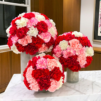 Luludi Living Art 530 Fifth Ave Carnation Floral Display