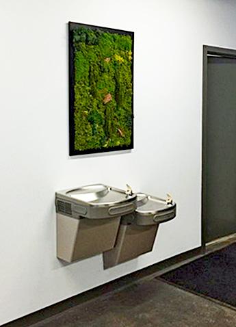 Luludi Living Art Office Moss Wall Art Panel