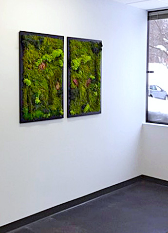 Luludi Living Art Office Moss Wall Double Panel